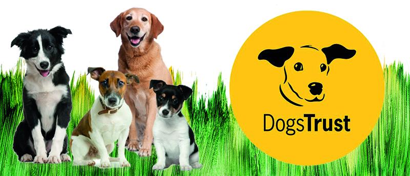 Dogs-Trust-min (1)